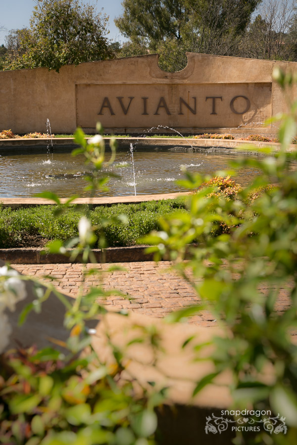 Avianto, Avianto Wedding Photographer, Candid, Candid Photography, Candid Wedding Photography, Dramatic Wedding Portraits, Fine Art, Fine Art Wedding Photographer, Fine Art Wedding Photography, Johannesburg Wedding Photographer, Leanne Williams, Natural Light, Natural Light Shooter, Photojournalism, Photojournalism Style Wedding Photography, Photojournalist, Photojournalist Style Wedding Photographer, Sean and Leanne Williams, Snapdragon Pictures, South African Wedding Photographer, Wedding, Wedding Photographer, Wedding Photographers, Wedding Photography