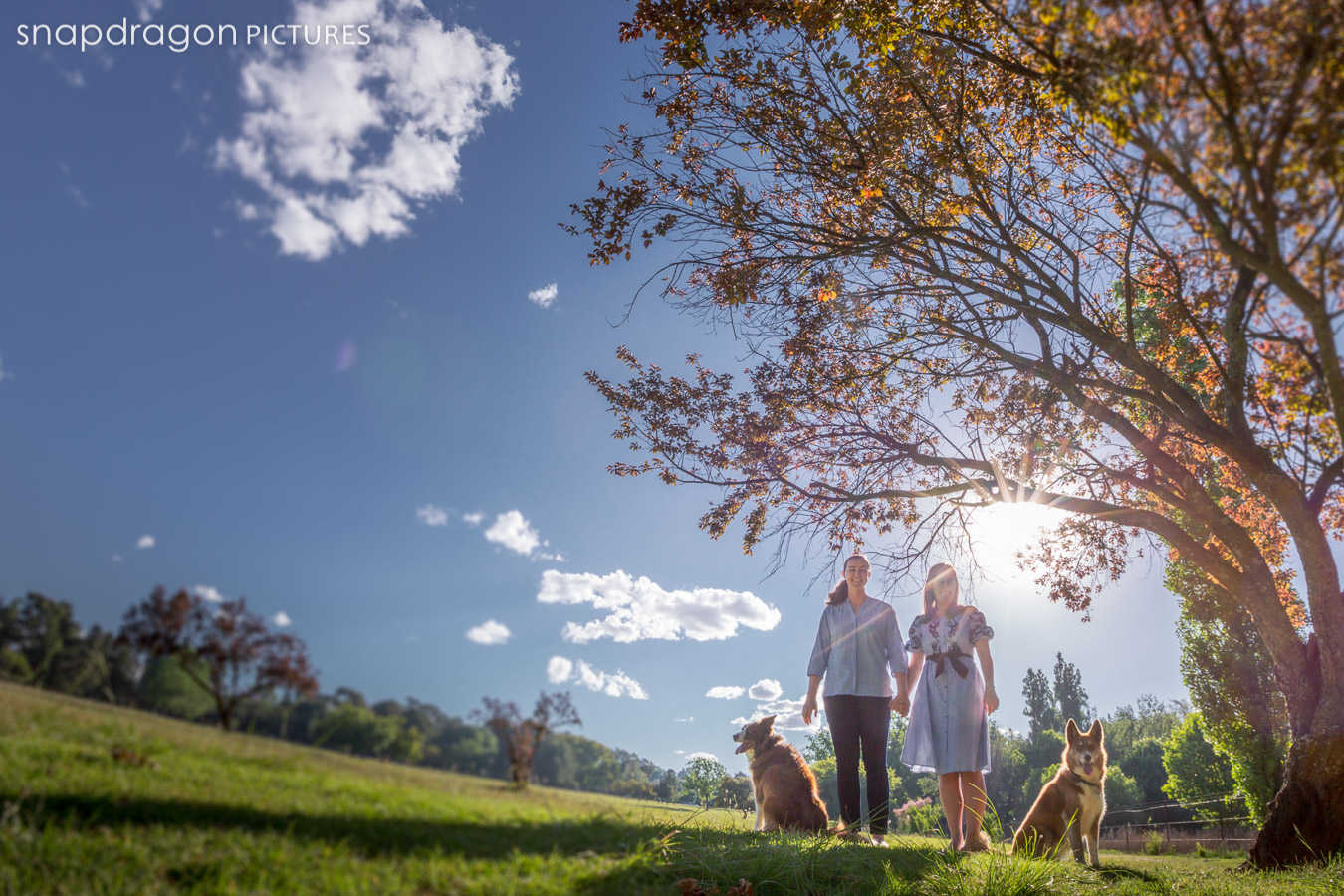 Canine, Couple, Dog, Dogs, Engagement, Family, Fine Art, Johannesburg, Leanne Russell Williams, Lifestyle, Pawtrait, Pawtraits, Pet, Pets, Photographer, Photographers, Photography, Portrait, Portraits, Snapdragon Pictures, South Africa