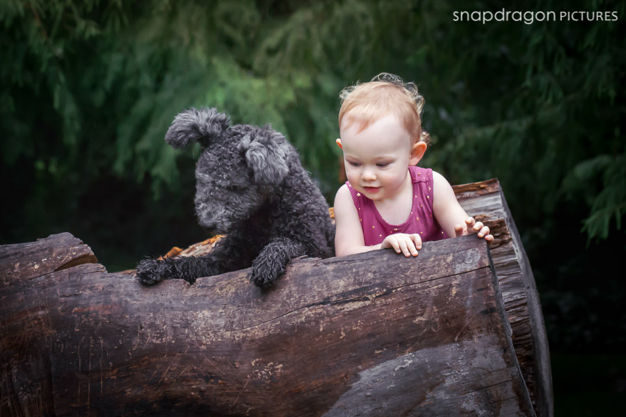 Child, Children, Digital Art, Dog, Dogs, Family, Fine Art, Gauteng, Johannesburg, Leanne Russell Williams, Lifestyle, Pawtraits, Pet, Pets, Photo, Photographer, Photographers, Photography, Portrait, Portraits, Snapdragon Pictures, South Africa, Toddler