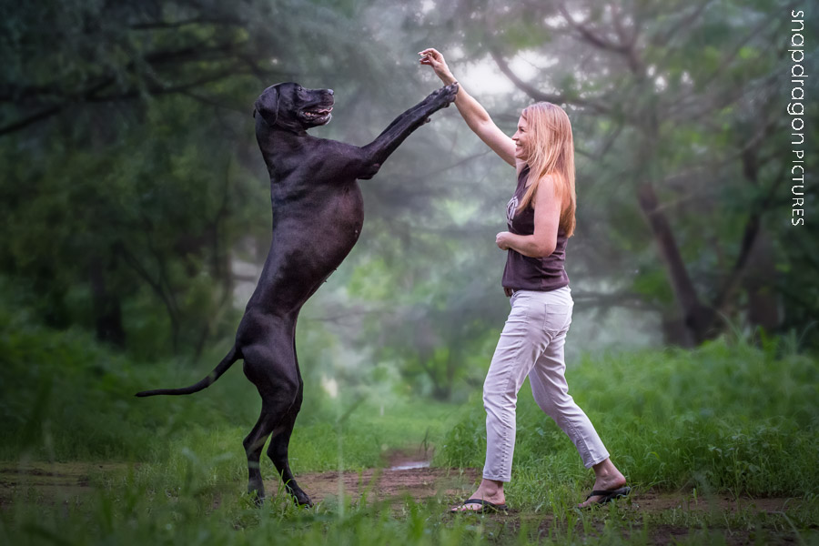 Animal, Animals, Dog, Dogs, Gauteng, Great Dane, Joburg, Johannesburg, Leanne Russell Williams, McKayning, Pawtrait, Pawtraits, Pet, Pets, Photo, Photographer, Photographers, Photography, Photos, Portrait, Portraits, Shannon McKay, Snapdragon Pictures, South Africa