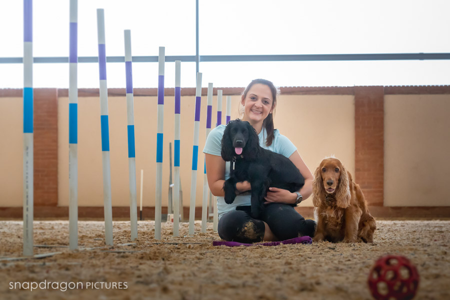 Agility, Animal, Animals, Baby, Business, Candid, Canine, Canine Performance Centre, Child, Children, Company, Corporate, CPC, Documentary, Dog, Dogs, Event, Events, Families, Family, Fine Art, Function, Functions, Gauteng, Johannesgburg, Kids, Lifestyle, Natural Light, Newborn, Pawtrait, Pawtraits, Pet, Pets, Photo, Photographer, Photographers, Photography, Photojournalism, Photojournalist, Photos, Portrait, Portraits, Puppies, Puppy, Snapdragon Pictures, South Africa, Studio, Video, Videographer, Videographers, Videography, Wedding, Weddings