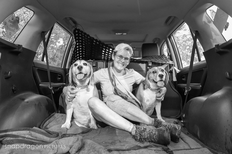 Agility, Animal, Animals, Baby, Business, Candid, Canine, Child, Children, Company, Corporate, Documentary, Dog, Dog Courier, Dog Driver, Dog Taxi, Dog Walk, Dog Walker, Dogs, Event, Events, Families, Family, Fine Art, Function, Functions, Gauteng, Johannesgburg, Just Four Paws, Kids, Kim Tracey Botham, Lifestyle, Natural Light, Newborn, Pawtrait, Pawtraits, Pet, Pets, Photo, Photographer, Photographers, Photography, Photojournalism, Photojournalist, Photos, Portrait, Portraits, Puppies, Puppy, Snapdragon Pictures, South Africa, Studio, Video, Videographer, Videographers, Videography, Wedding, Weddings